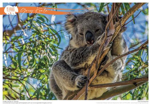bushfire-calendar-pages-1